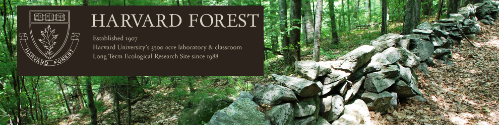 HarvardForest